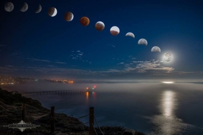 Our moon through it's cycle.