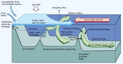 Ocean currents undergo convection.