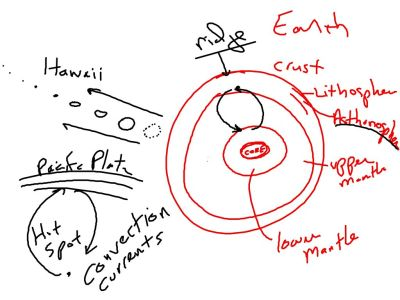 Not just gases and liquids.  Molten rock in the earth also undergoes convection.