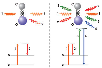 """Absorption of IR waves increases the energy of the molecule increasing the Rotational and vibrational energy which results in increased translational energy. This increases the average kinetic energy which causes the molecules to slam into each other bouncing around and decreasing the density of the group of molecules which causes the other denser cooler areas to push up  this less dense warmer area thus giving birth to """"convection""""."""